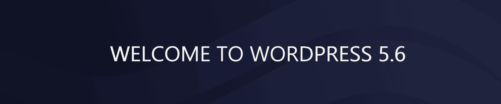 WordPress 5.6 updates! New features!